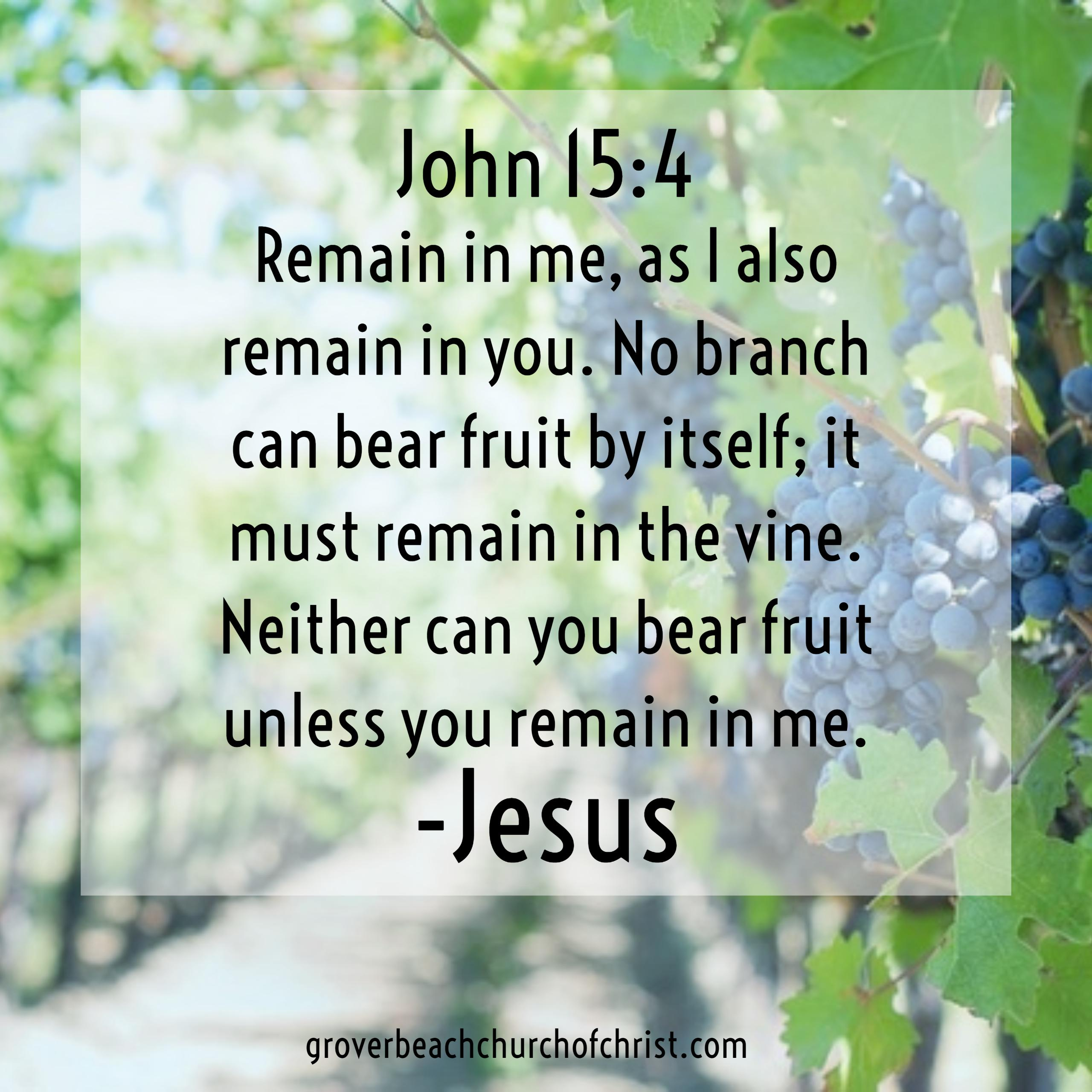 John 15-4 Remain in me