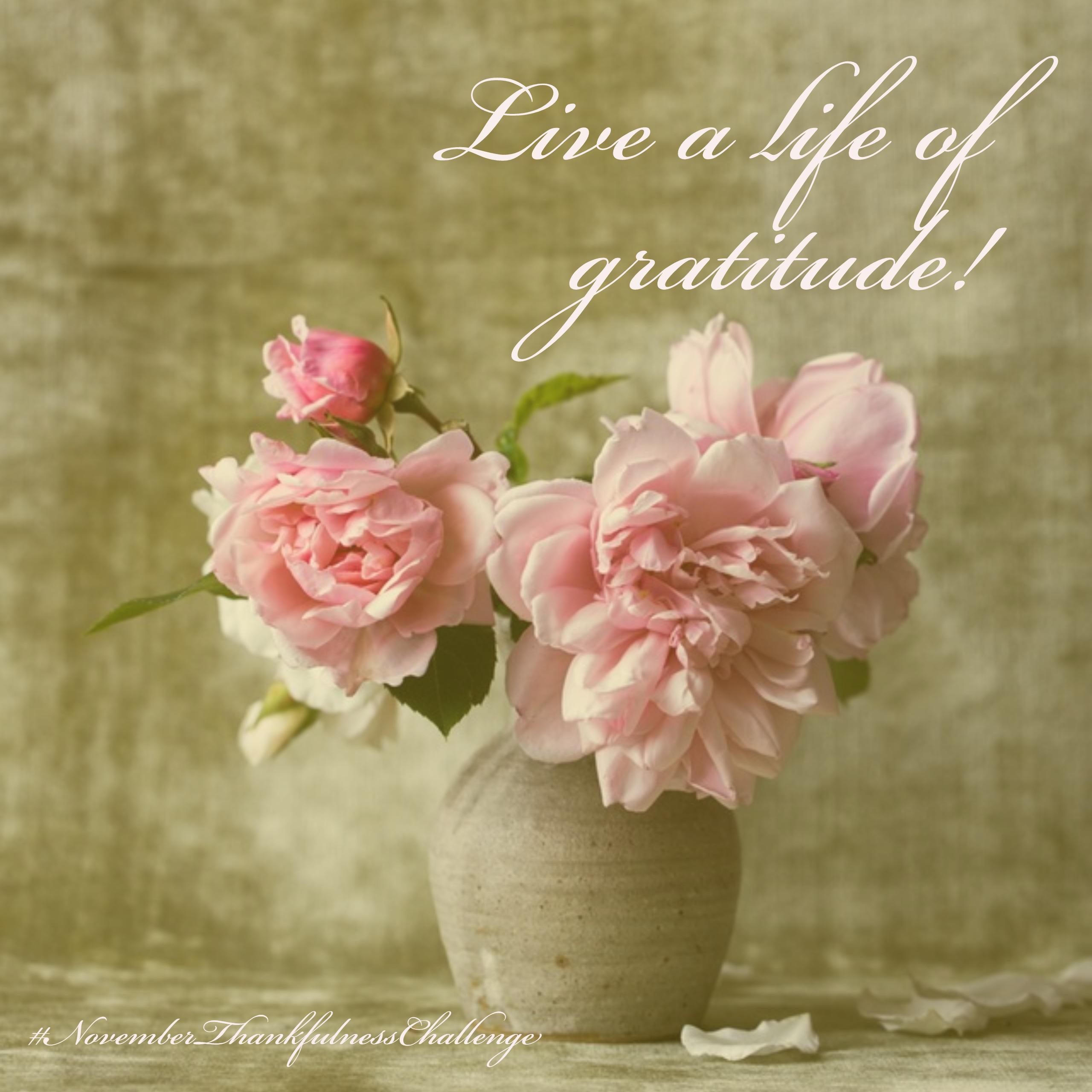live-a-life-of-gratitude