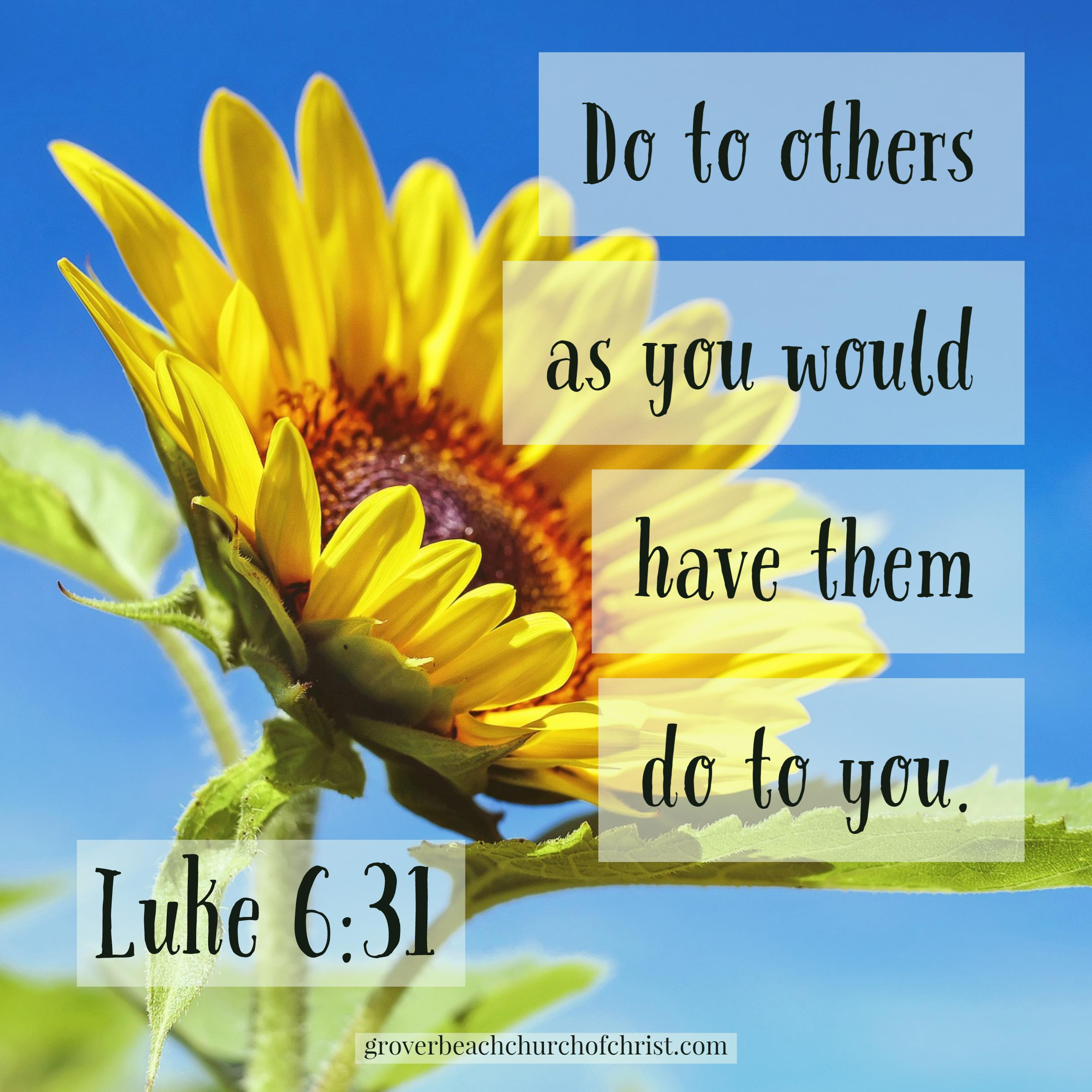 Luke 6:31 Do to others as you would have them do to you