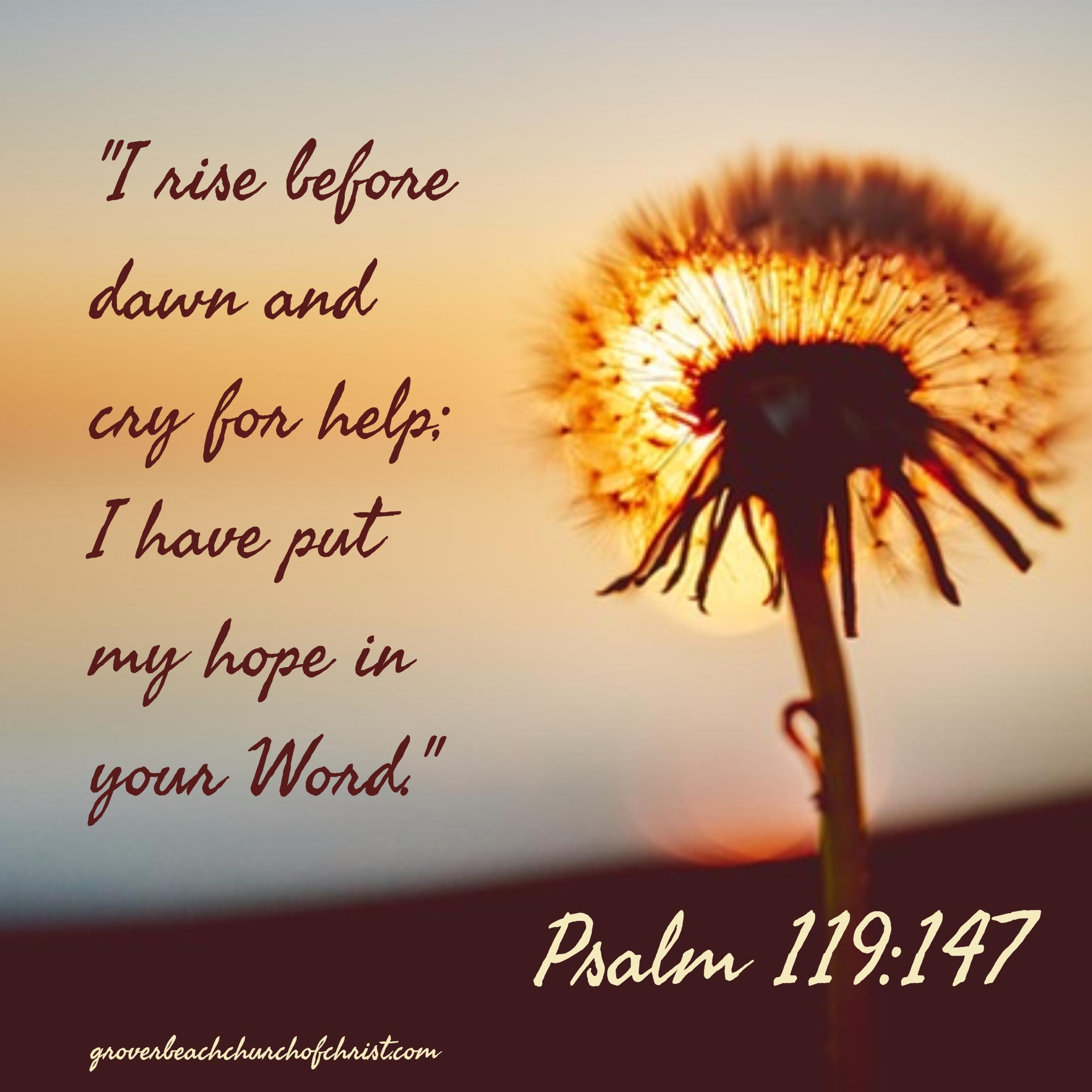 psalm-119-147-i-rise