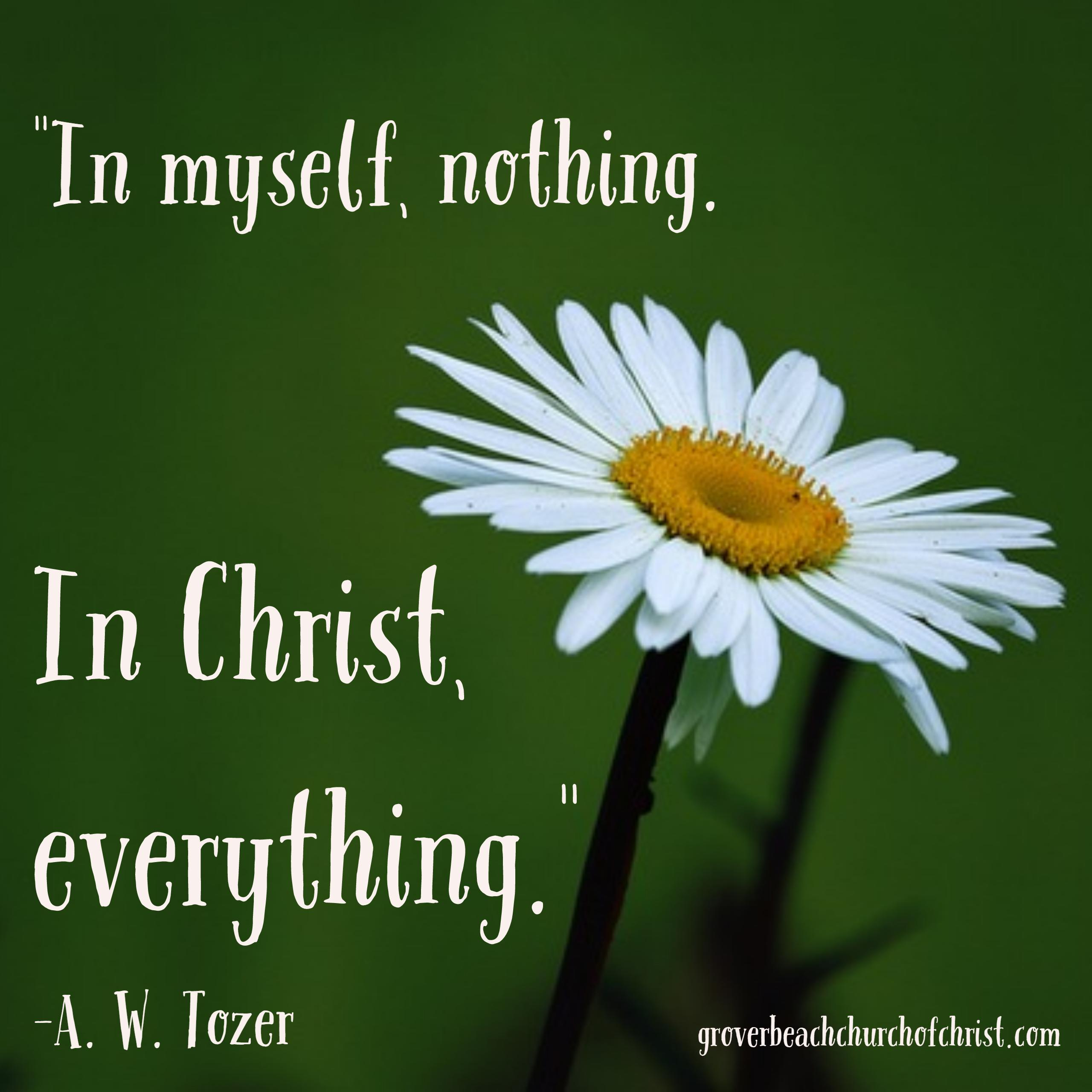 Tozer In myself nothing